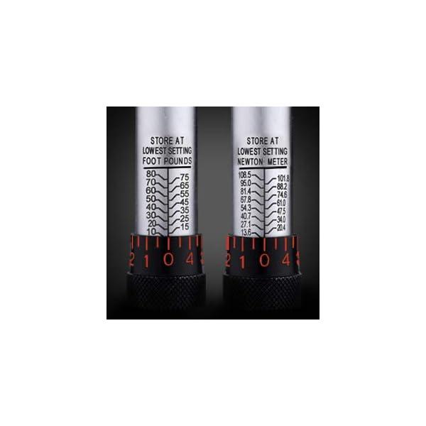 TACKLIFE-Chiave-Dinamometrica-Professional-12136-2035-NM-Barra-di-Prolunga-di-Calibrazione-24T-Riduttore-da-38-Scatola-Certificazione-Per-Riparatori-MACCHINA-MOTO-BICI-HTW2A
