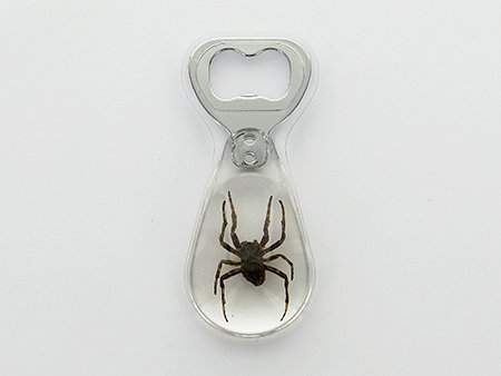 Brown Recluse Spider Bottle Opener by Lucite Treasures -