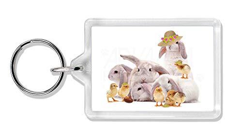 Advanta - Keyrings Rabbits + Chicks in Hüte 'Happy Easter' Foto Schlüsselbund TierstrumpffüllerGesc