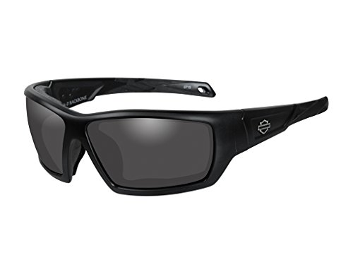 Harley-Davidson Wiley X Backbone Smoke Grey Motorrad Brille