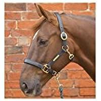 William Hunter Equestrian Hy - Cabezada de piel para caballo marrón marrón Talla:doble