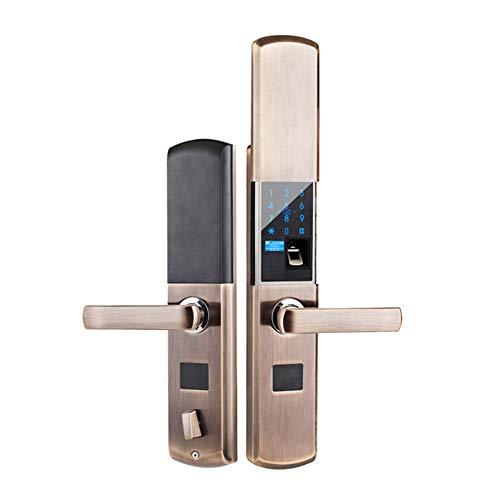IGRNG Intelligent Fingerabdruck-Verschluss, Schieben elektronischer Fingerabdruck-Password Lock Nehmen Abfrage Sprachaufforderung LED Intelligent Display,1