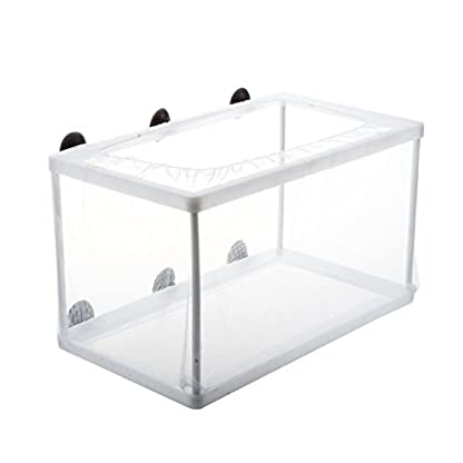 SODIAL(R) Fish Tank Plastic Frame White Net Fry Hatchery Breeder with Suction Cups 2