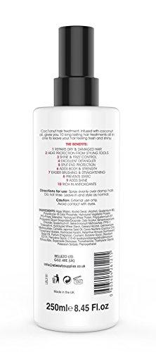 Kokos-Hitzeschutzspray – Anti-Frizz, UV-Schutz – 10-in-1 Styling-Produkt – 250 ml - 2