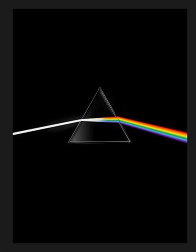 Book's Cover of Pink Floyd their mortal remains  Le livre officiel