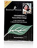 Shahnaz Husain Colourveda Natural Hair Colour, Blackish Brown/Pack of 2, 100g