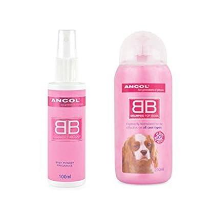 Ancol Dog Perfume and Shampoo Talc Powder Set 1