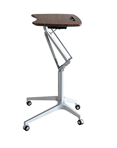 Ergoneer Stylish Design Height Adjustable Mobile Laptop
