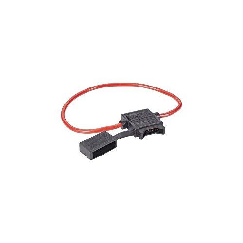 Pole 40 Amp (AIV Kfz Flachsicherungs-Halter Flachsicherung Standard Pole 1 40A 6mm² 1St.)