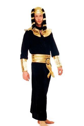 Este disfraz fantástico y llamativo de VK Event Fashion lo convertirá a usted en el centro de atención en cualquier carnaval o fiesta de Halloween. Se trata de un artículo nuevo con una etiqueta. Para el volumen exacto y las tallas disponibles, consu...