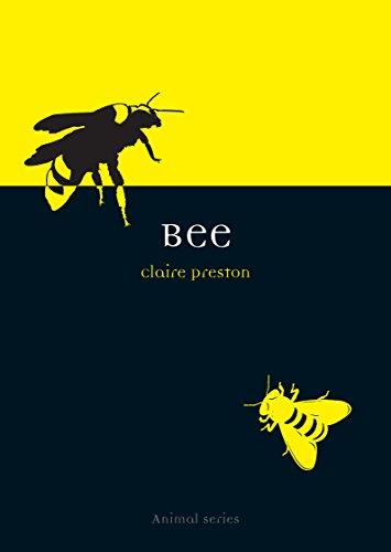 Bee (Animal Series)