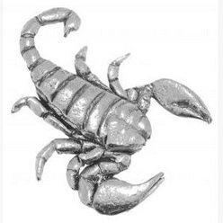 Geschenk-Box Zinn Scorpion Anstecker oder Brosche Geschenk für Schal, Krawatte,...