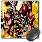 yves-creations-berries-and-fruit-autumn-grapes-at-harvest-mousepad-mp-97768-1