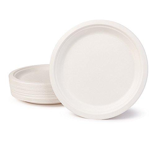 BIOZOYG Vaisselle à Base Bagasse I 500 pièces d'assiettes du Canne de Sucre Blanche Ronds décolorée 24 cm I Bio jetable Vaisselle, Menu Plats et jetable fête Assiette