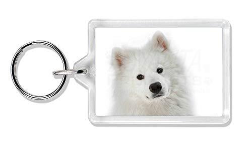Advanta - Keyrings Samojede Hund Foto Schlüsselbund TierstrumpffüllerGeschenk -