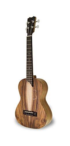 apc-instruments-t-mx-ukelele