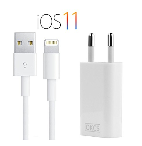 OKCS Ladeset Slim Version Netzteil 1A + 2M Lightning Kabel für Apple iPhone 8, 8 Plus, X, 7, 7 Plus, 6, 6 Plus, 6s, 6s Plus, 5, 5s, 5c, SE, iPad 4, Mini, 2, 3, 4, Air, 2, Pro - Weiß Test