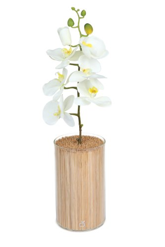 cookut-gar01-bloc-porte-couteaux-forme-de-vase-avec-orchidee-verre-bambou