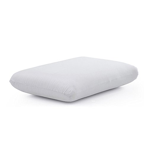 The White Willow Visco 1 Pieces Memory foam Regular Bed Pillow - 15' X 24' X 4', White