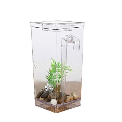 Arvin87Lyly Mini Desktop Aquarium Komplettset mit LED Beleuchtung, Filter, Künstliche Pflanzen, Kopfsteinpflaster, Verbindungsrohr und Wassertank, Selbstreinigendes Aquarium