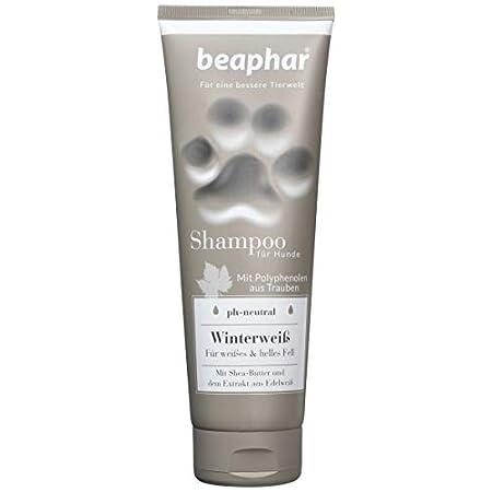 Premium Shampoo Winterweiß für Hunde | Hundeshampoo für weißes & helles Fell | Glänzendes Fell | pH neutral | Shampoo…