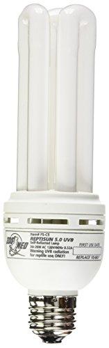 Zoomed T6016400 Lampada Reptisun