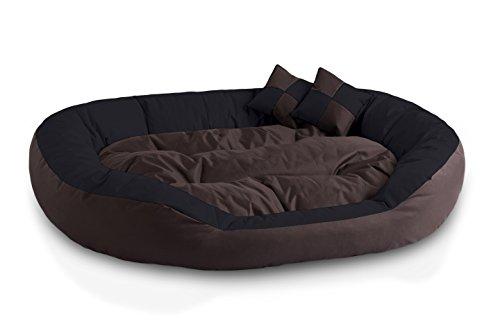 BedDog 4en1 Saba Marron/Negro XXL Aprox. 110x80cm colchón para Perro, 7 Colores,...