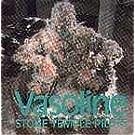 Vasoline [SINGLE] [IMPORT]