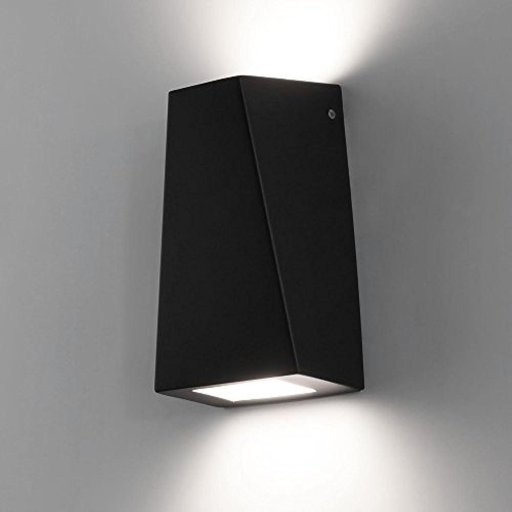 WW Gartenstrahler Spot Erdspieß schwarz GU10 230Volt max 35W Led RGB