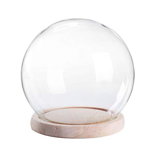 QSJWLKJ 12cm Pequeño soporte de vidrio Pantalla Cúpula Globo Campana Cubierta de...