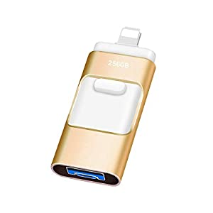Kaulery Memoria USB 256GB para