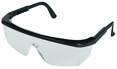 ERB 15237 Sting-Rays Safety Glasses, Black Frame with Clear Anti-Fog Lens by ERB