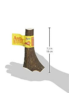 Antler Natural Chew