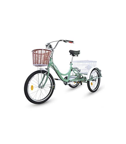 Riscko Triciclo Adulto Dos Cestas Bep-14 Azul Turquesa
