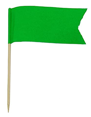 50 Solid Green Blank Toothpick Flags Dinner Flag Picks Cocktail