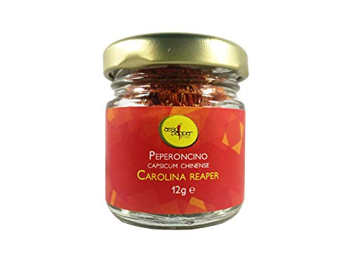 PEPERONCINO CAROLINA REAPER 12g IN POLVERE SUPERHOT GUINNESS WORLD RECORD COME PIU' PICCANTE AL MONDO