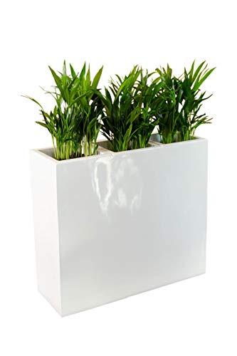 *Vivanno Pflanzkübel Raumteiler Trennelement Sichtschutz Fiberglas weiß Elemento – 75x30x88 cm*