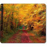 customized-27705-path-through-the-autumn-woods-nature-art-large-mousepad-natural-eco-rubber-mousepad