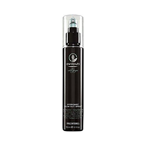 paul-mitchell-awapuhi-wild-ginger-hydromist-blow-out-spray-1er-pack-1-x-150-ml