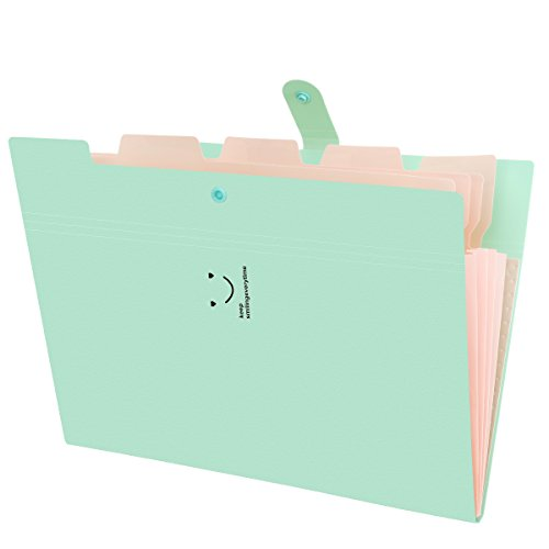 Organizador Expandible Carpetas de Archivos, 5 bolsillos Carpeta Clasificadora con Tapa Oficina Accordion A4 Carpeta de Documentos Maletín Archivador Empresarial