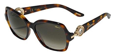 chopard-sch206s-lunettes-papillon-acetate-unisexe