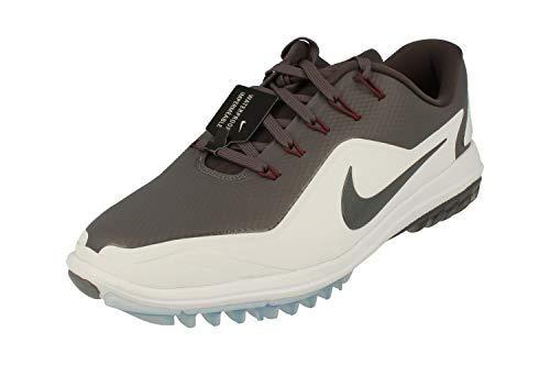 Nike Herren Lunar Control Vapor 2 Golfschuhe Grau (Gris 004) 45 EU (Nike Basketball-schuhe Männer Lunar)