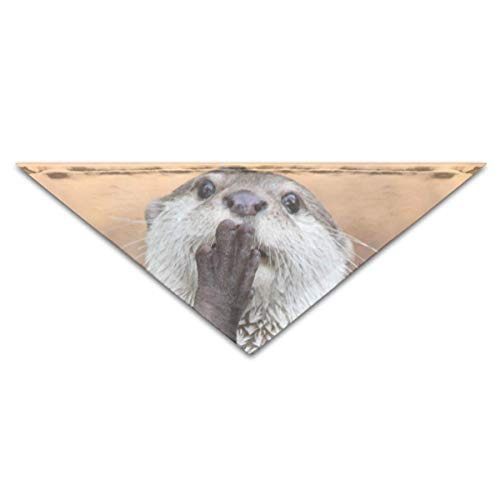 The Otter Gives You A Kiss Or Prayer Turban Triangle Scarf Bib Scarf Accessories Pet Cat and Baby Puppy Saliva Dog - Otter Baby Kostüm