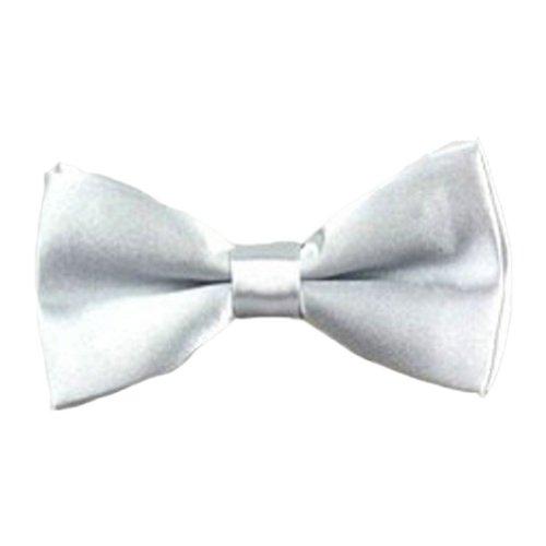 Preisvergleich Produktbild Schleife Krawatte - SODIAL(R) Niedliche huebsche justierbare Haustier Teddybaer Hund Katze Jungen Baby Schleife Krawatte Schleife silbrig