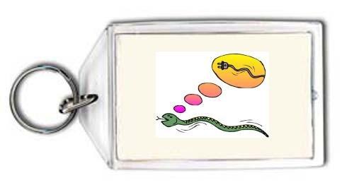 Schlüsselhalter mit der Grafik: Elektro, Träumen, Idee, Stecker, Schlange, Schnur - Elektro-schlangen