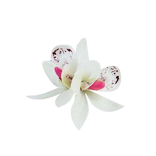 igemy-mariposa-orqudea-gamuza-de-Bohemia-flores-playa-flores-pelo-Clips