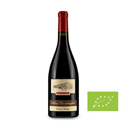 Pinot Nero 2015 - Trentino DOC - cl. 75 - Vigna Cantanghel