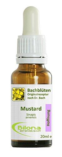 Joy Bachblüten, Essenz Nr. 21: Mustard; 20ml Stockbottle