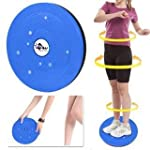 VPN Fitness and Service Twister - Big DISC Tummy Twister