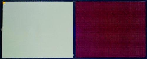 Andersen 411Polypropylen reinigen Stride Matte mit Teppich, für Innen, 92.5